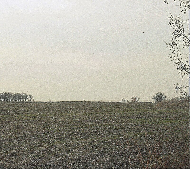 Осень... поле у моря ... SAM_4444.JPG