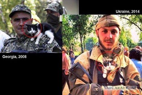 Террористы используют российское оружие, - Аваков - Цензор.НЕТ 9367