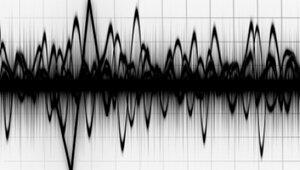 Первое землетрясение в 2014 году во Вранче