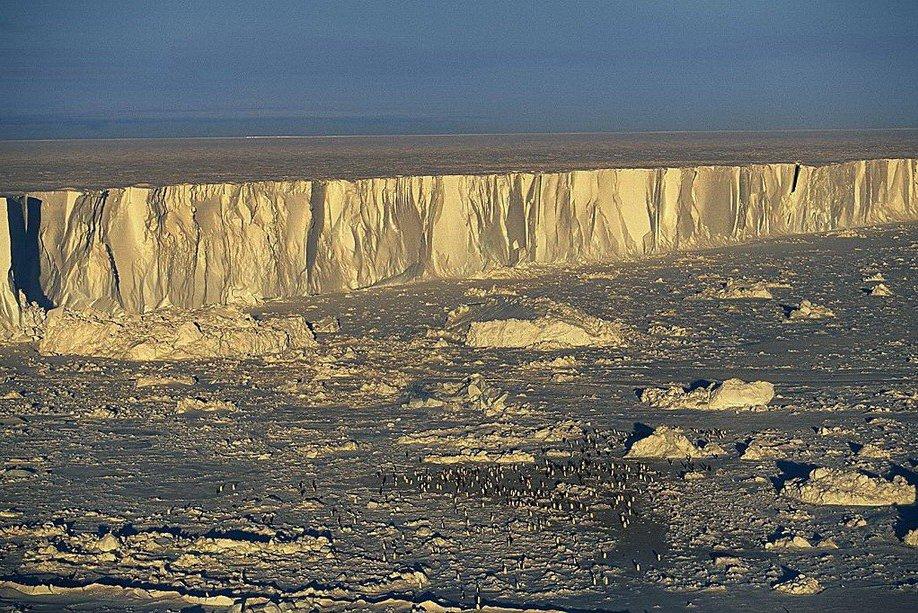 10. Колония императорских пингвинов на острове Бофорта у берегов Антарктиды.