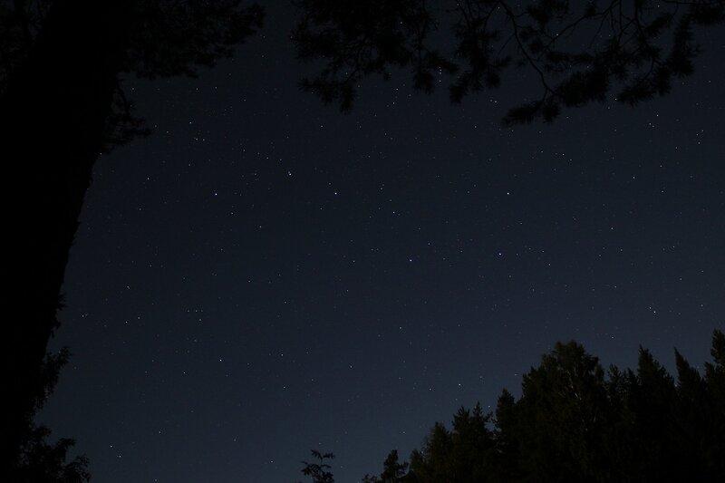 Звёздное небо с ковшом Большой медведицы в окне из листвы img_7561