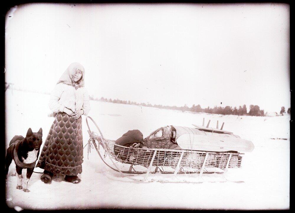1913. Село Ларьяк.  Остяки с нартою
