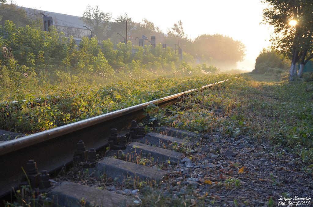 Железнодорожный пейзаж №6