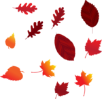 Осень46