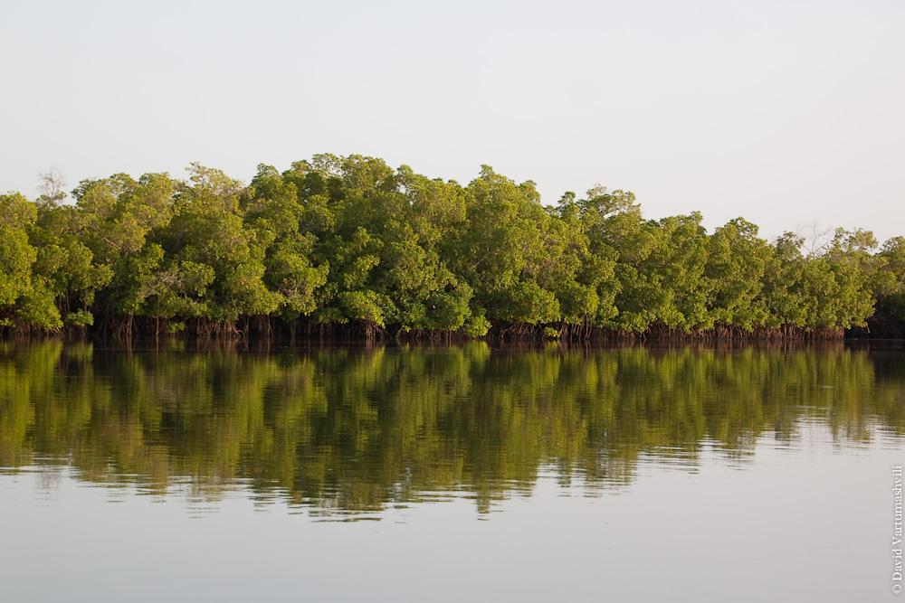 Сенегал, Тубакута, река Салоум.