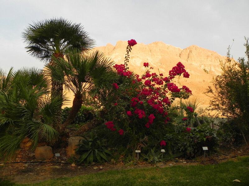 Восход на Мёртвом море.