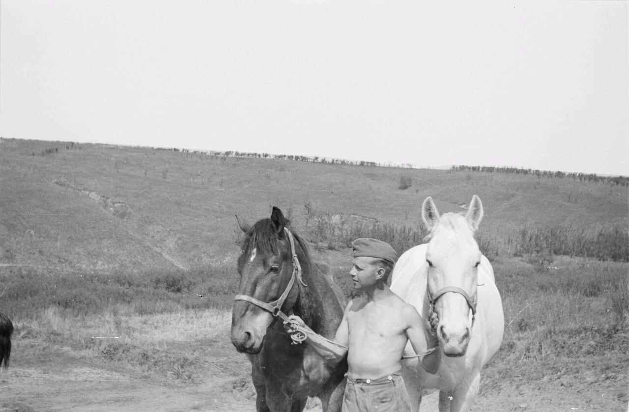 Белгородская область. Франц Грассер с лошадью