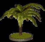R11 - Palms - 2013 - 009.png