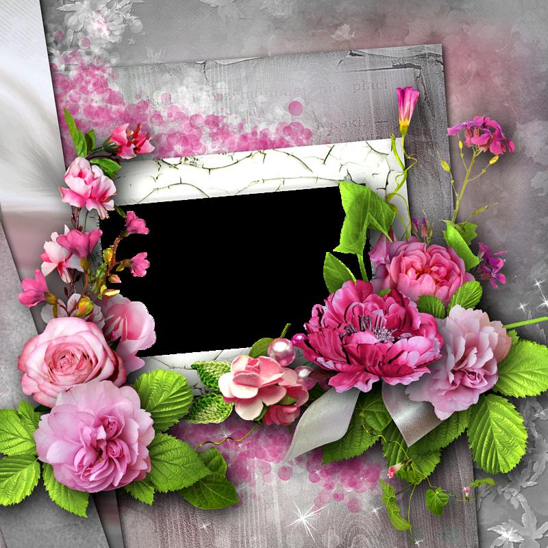 bee_floral_album_QP6.png