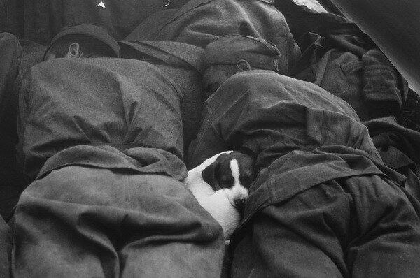 """Георгий Липскеров. """"Пусть солдаты немного поспят"""". Прага, май, 1945.jpg"""