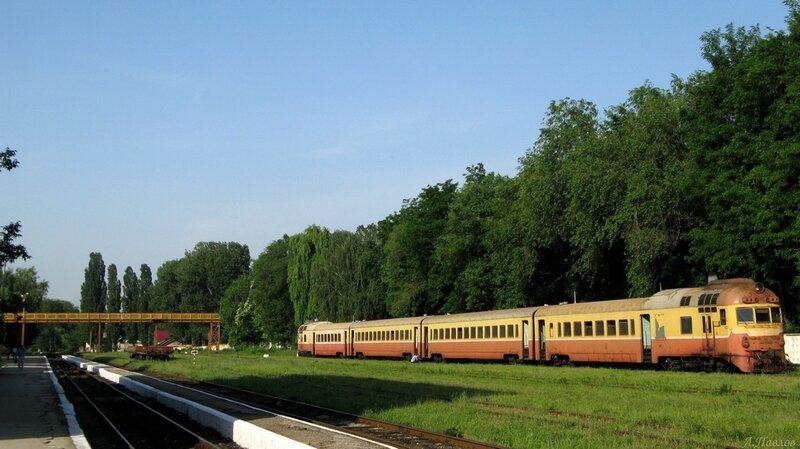 Д1 753-3 (100).JPG