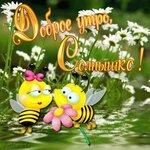 Доброе утро, солнышко! Пчелки открытки фото рисунки картинки поздравления