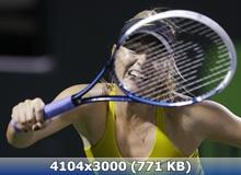 http://img-fotki.yandex.ru/get/9495/247322501.3a/0_16ce76_4b863516_orig.jpg