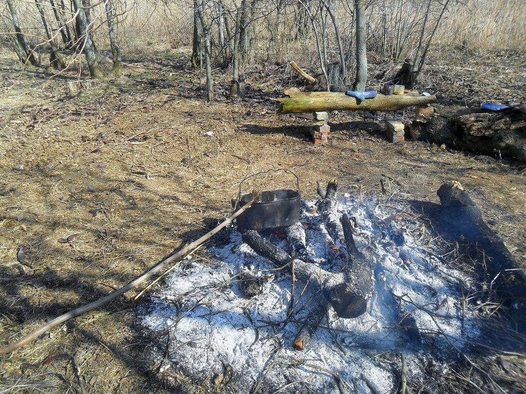 Свежий пепел костровой ... SAM_5798.JPG