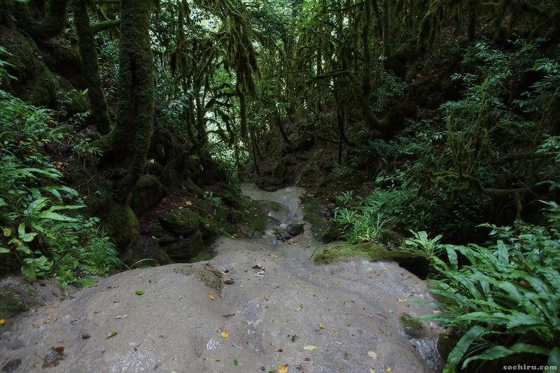дорога на водопады Ажек