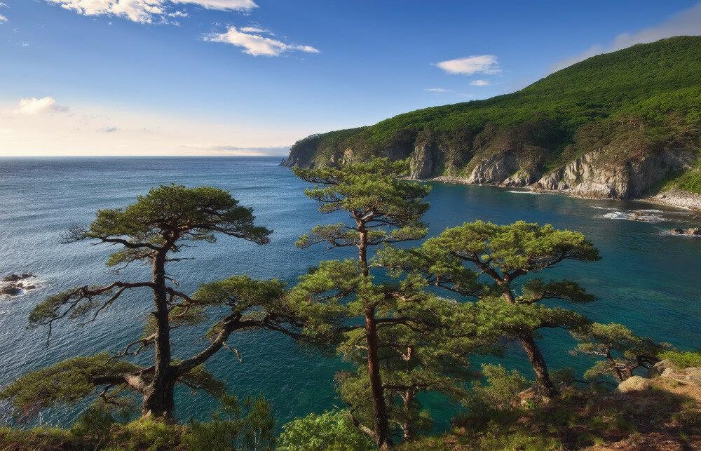 морские пейзажи прим края фото банкноты можно