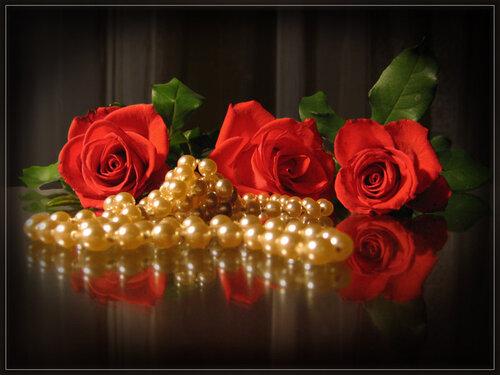 Красота трех красных роз оттеняется жемчугом открытка поздравление картинка