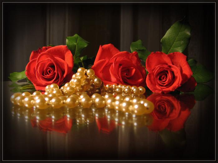 Красота трех красных роз оттеняется жемчугом