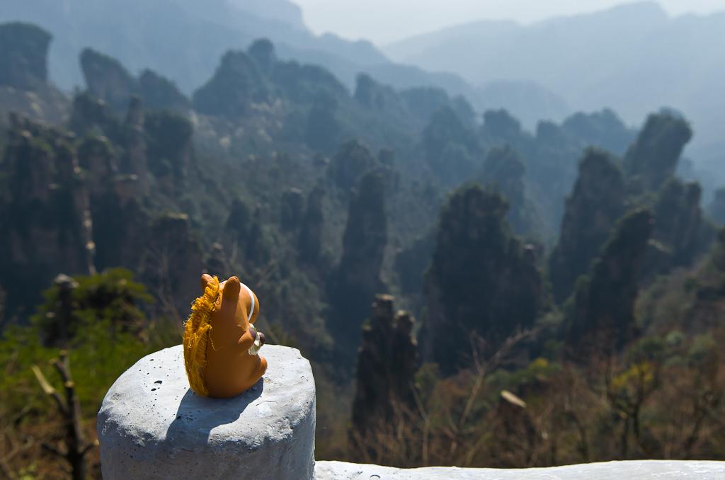 Конь Борис в национальном парке Чжанцзяцзе (The Zhangjiajie National Forest Park,湖南张家界国家森林公园) во время путешествия по Китаю.