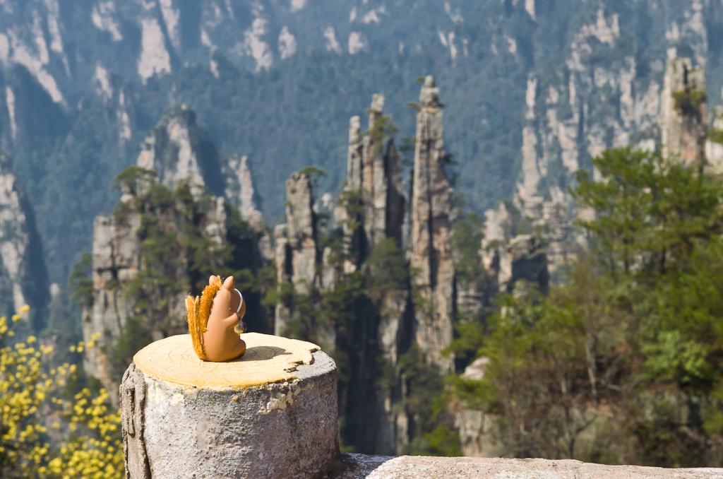 Коник Борька на смотровой площадке в парке Чжанцзяцзе. Отзывы о путешествии в Китай дикарями.