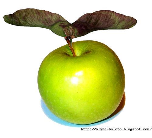 Крылатое яблоко