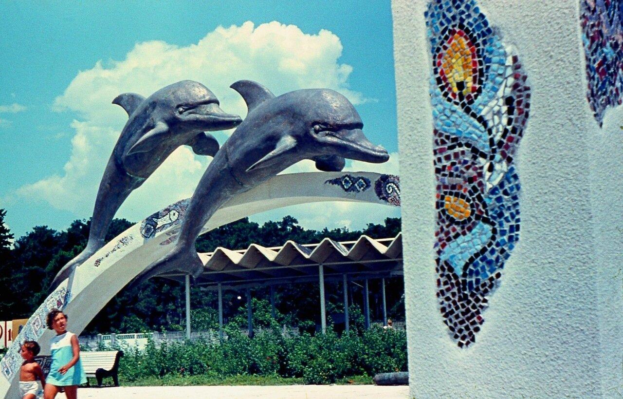42. Дельфины
