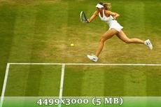http://img-fotki.yandex.ru/get/9497/14186792.3a/0_d9794_6c86980d_orig.jpg