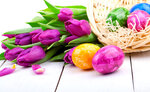 Easter eggs and bouquet tulips, on white wooden