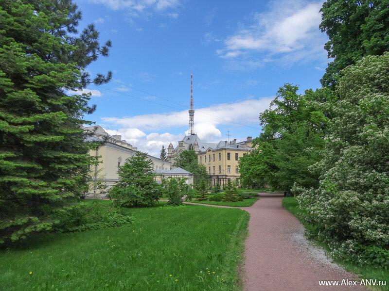 Как я уже говорил, над территорией Ботанического сада доминирует телевизионная башня. Её видно практически отовсюду.