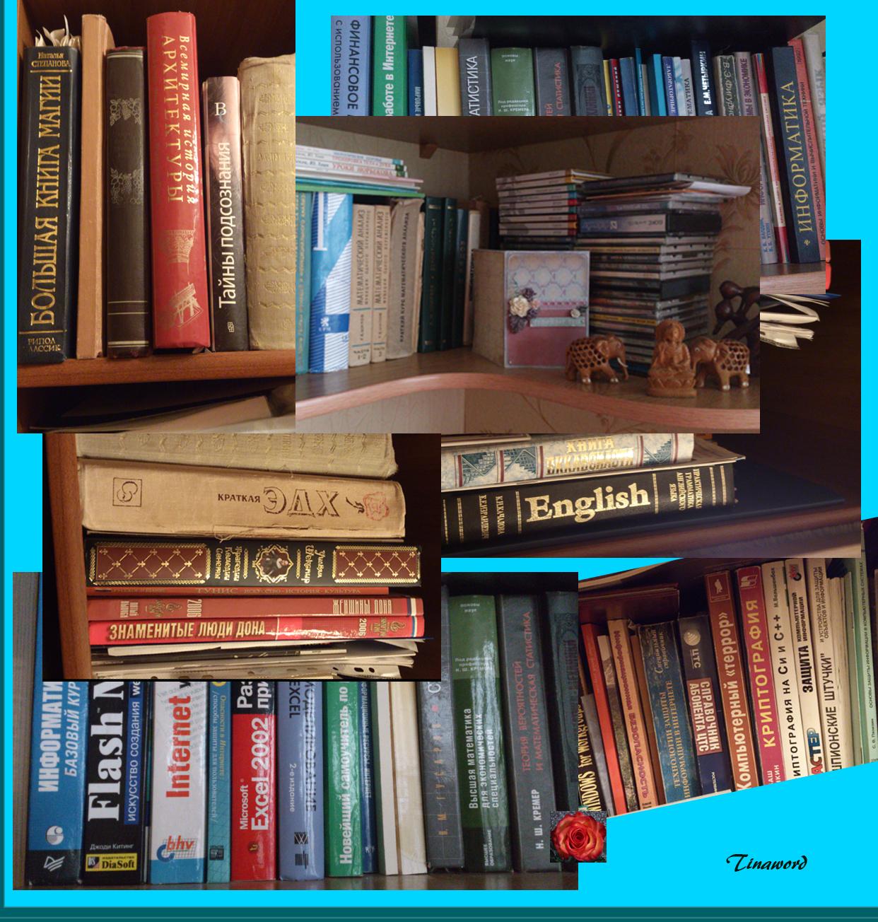 мои книги.jpg