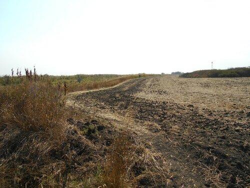 Изгиб границы поля... DSCN1375.JPG
