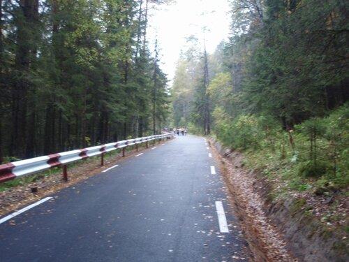 Дорога по логу Лалетино