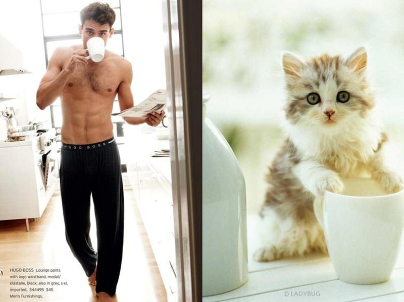 Забавные фото - мужчины и кошки