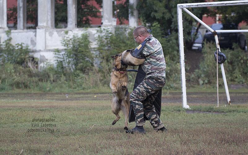 http://img-fotki.yandex.ru/get/9498/195910437.14/0_c4321_1263f32a_XL.jpg