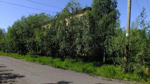Фотография Инты №5135  Юго-восточный угол Коммунистической 20 16.07.2013_12:14