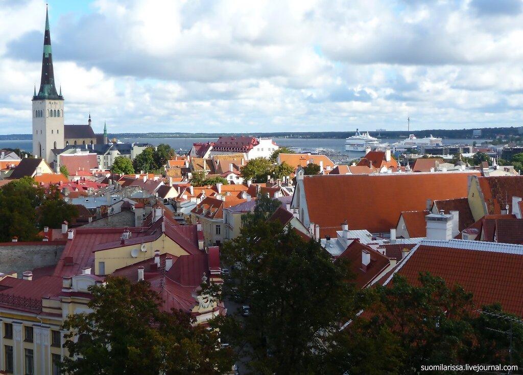 Вид на залив и Средневековый Нижгород.