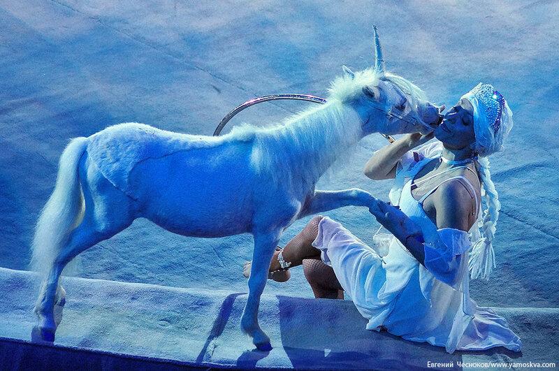 Зима. Большой Московский цирк. 22.12.15.37..jpg