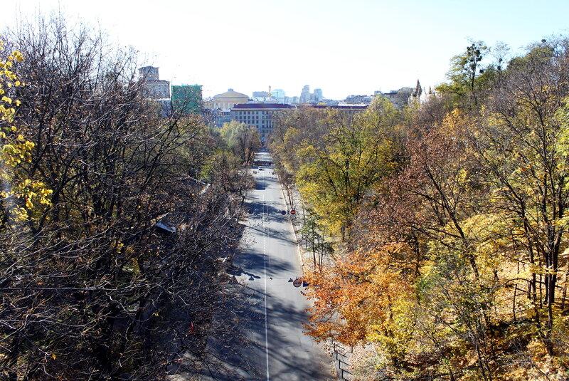 Вид с паркового мостика на Петровскую аллею