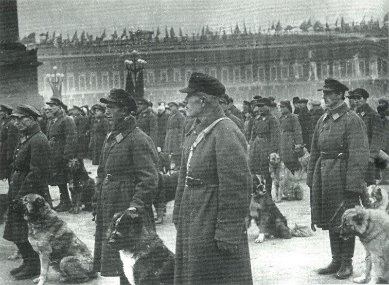 Школа служебного собаководства на параде в день 15-летия милиции. Дворцовая площадь.
