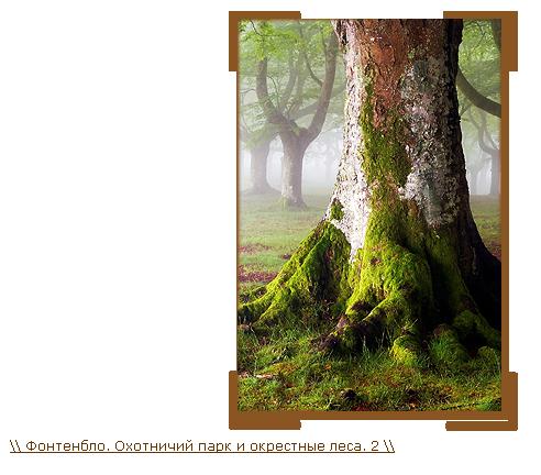 http://img-fotki.yandex.ru/get/9498/56879152.338/0_f4779_5d86711b_orig