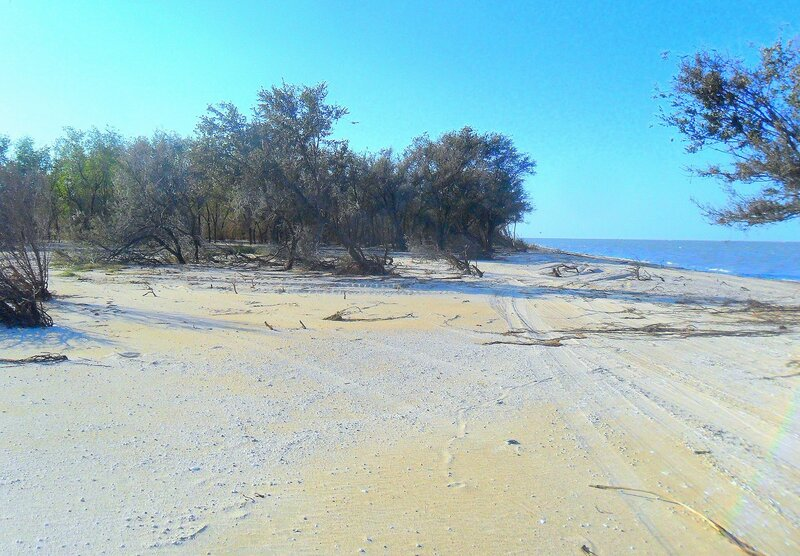 На пустынном берегу ... SAM_3926.JPG