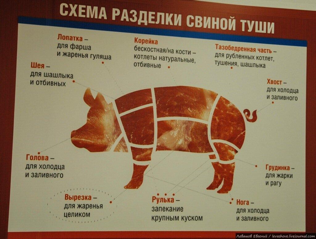 части мяса свинины картинки грусти