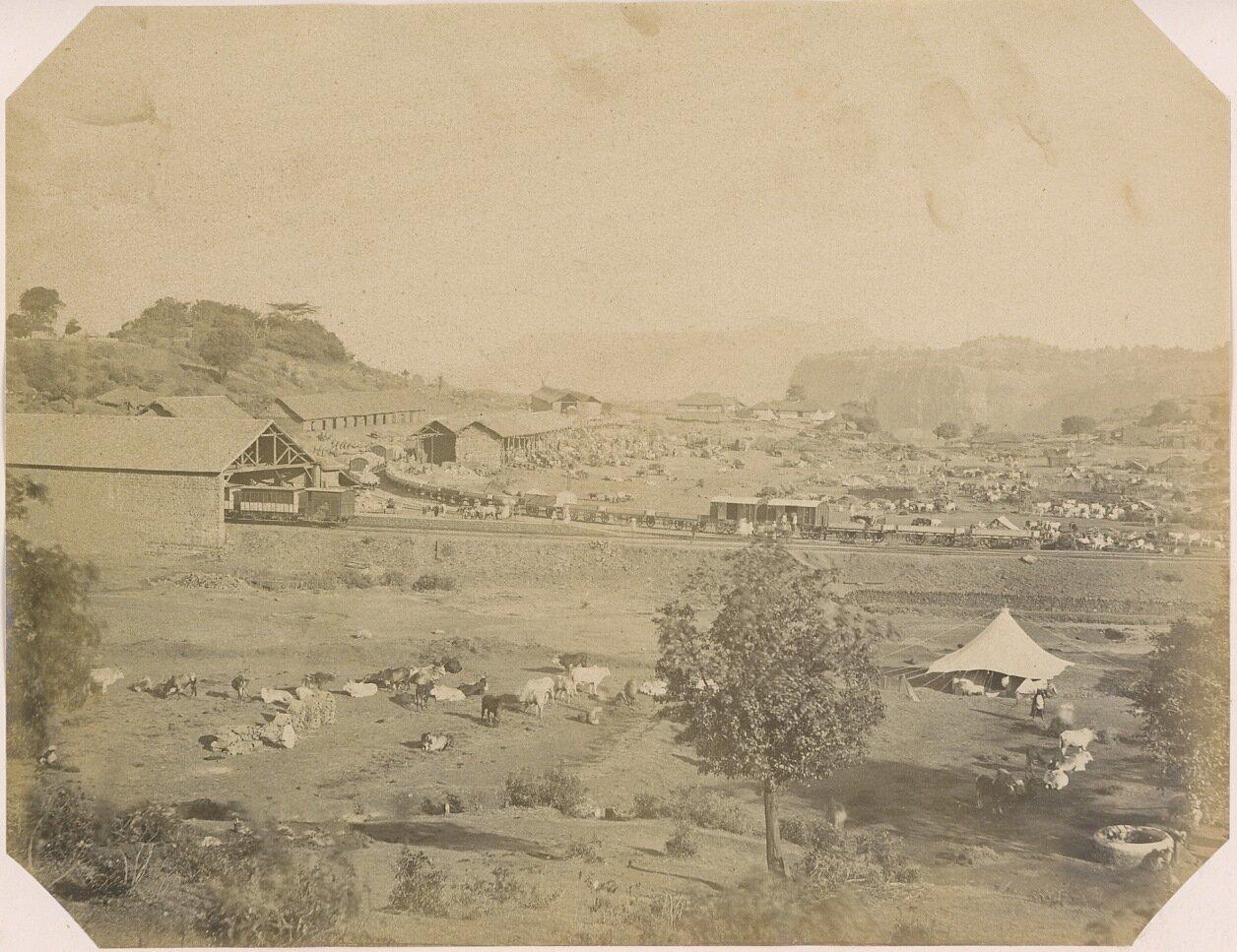 Железнодорожная линия с поездами, 1875-80