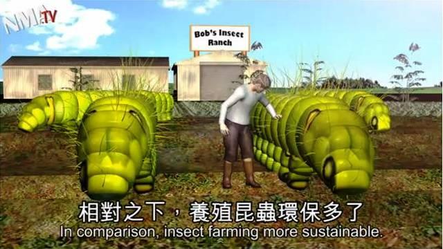 Ферма насекомых