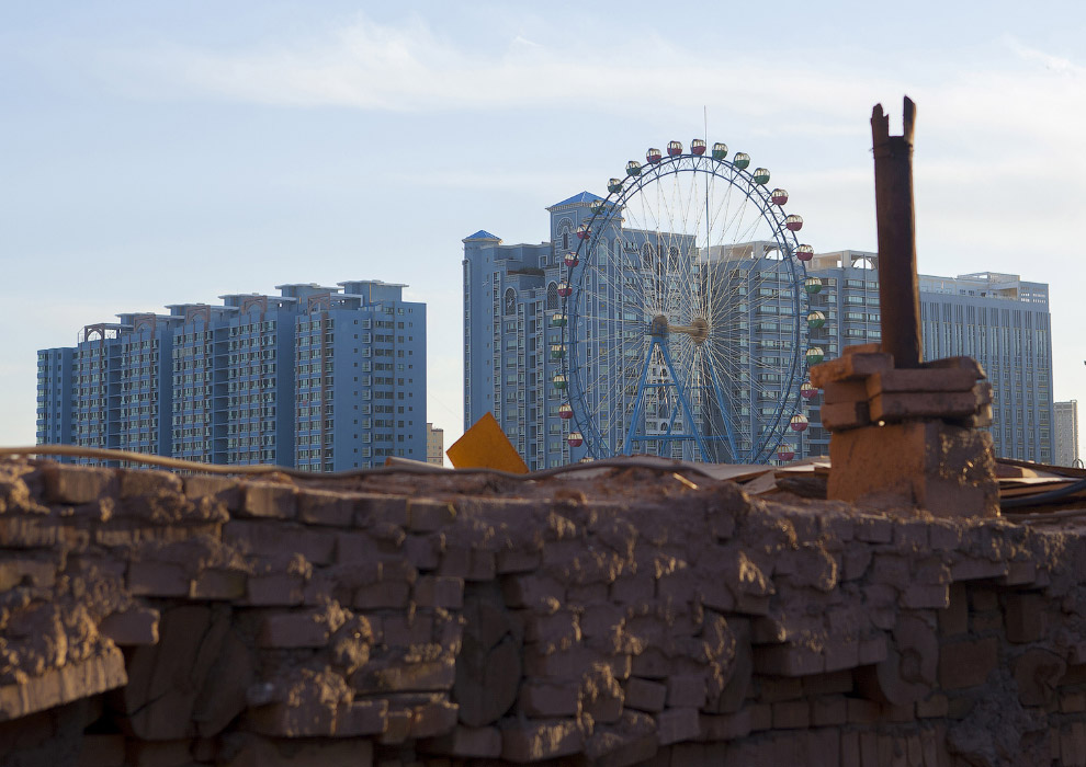 5. Местный житель — длинноухий тушканчик. (Фото China Daily   Reuters):