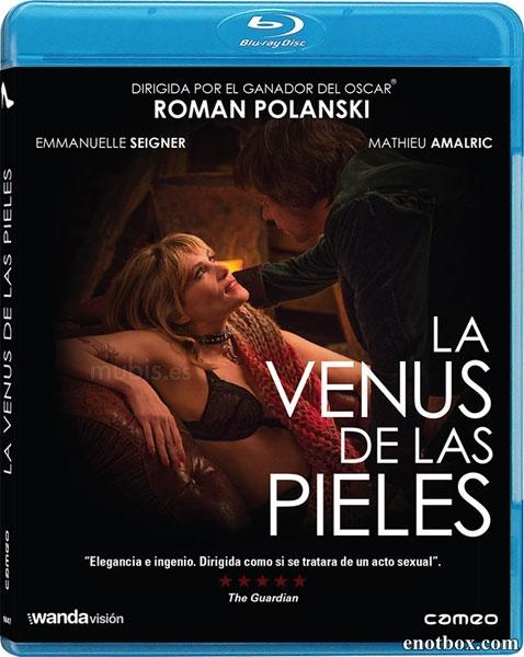 Венера в мехах / La Vénus à la fourrure (2013/BDRip/HDRip)