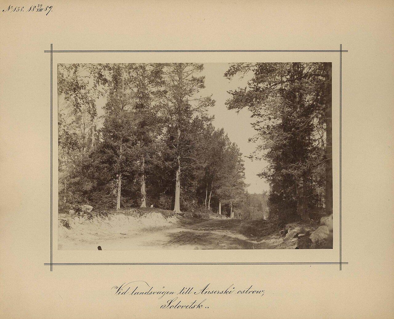 29.8.1889. Дорога на  Анзерском острове