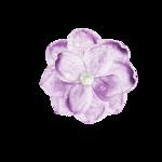 Palvinka_FlowerEssence_flower1b.png
