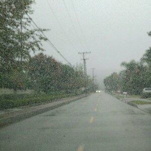 drizzle - мелкий моросящий дождь