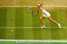 http://img-fotki.yandex.ru/get/9500/14186792.3a/0_d9781_a8d2ea9b_orig.jpg